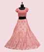 Pink and Peach Lehenga Choli with Handwork 2
