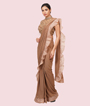Chickoo Lycra And Net Saree 2