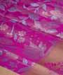 Rain Pink Soft Silk Saree Tunchi Hf Gold Zari 2