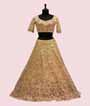 Lemon Yellow Lehenga Choli with Parsi and Leather work 2