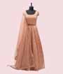 Peach Salwar Kameez in Net with Multicolour Embroidery 1