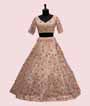 Light Peach Lehenga Choli with Leather and Applic work 2