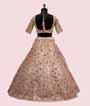 Light Peach Lehenga Choli with Leather and Applic work 3