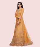 Mustard Gown 2