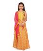 Yellow Choli 1