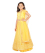 Yellow Choli 2