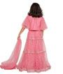 Pink Choli 3